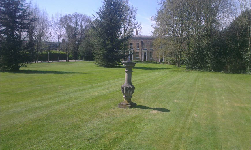 Essex gardening and tree services